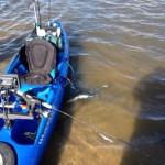 Saginaw Bay Fishing Report 07/17/2014
