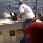 Harbor Beach Fishing Report   8/11/2014